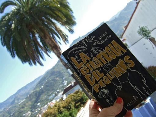 La estrategia del pequinés contemplando Teror desde el patio de Toñi Ramos